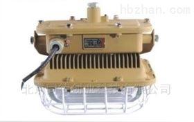 SBD1101-YQL50免维护节能防爆灯
