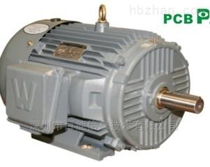 PEWWE5-18-184TC-美国Worldwide高效电机 马达