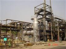 組合式回轉窯焚燒爐(固廢處置系統)