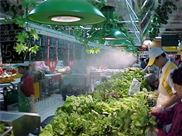 超市专用雾化加湿器厂家直供