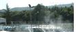 供应地理式污水厂除臭系统