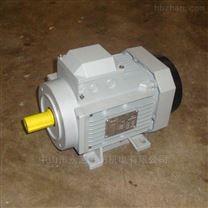 维高250W立式电机