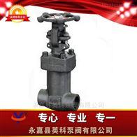 J11H/Y、J61H/Y型锻钢内螺纹、承插焊截止阀