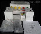 Rat DLL4 ELISA Kit
