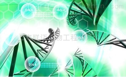 无RNase的DNase溶液,1U/μL