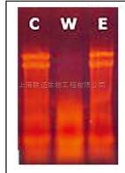 液相RNase清除剂