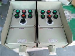 BXK-A2D2B1G防爆控制箱