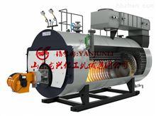 山東龍興熱水蒸汽鍋爐廠家 熱水蒸汽鍋爐報價