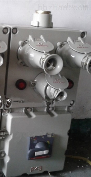 专业定制不锈钢防爆动力检修箱