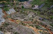 常宁市曾家溪重金属污染土壤治理及生态建设