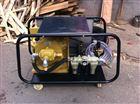WD17/14 WD28/20意大利热水高压清洗机