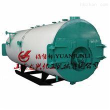 山東龍興凝式燃氣蒸汽鍋爐專業廠家