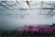 ?高品质蔬菜大棚雾化加湿机-高压微雾加湿器