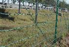 林场隔离网