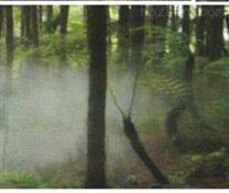供兰州园林绿化和天水园林工程详情