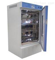 湖北科輝DW-250低溫恒溫箱貯存箱