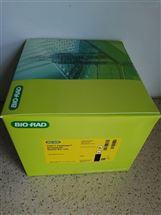Bio-Rad伯乐TGX丙烯酰胺制胶试剂盒1610174