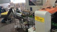 自动柠檬花袋机海南柠檬包装机