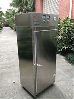SK-CX-WZ30外置式臭氧发生器