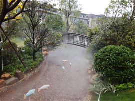 广州园林人造雾