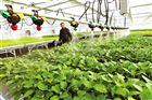西安自动滴灌系统设备生产厂家