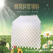 塑料PP六角蜂窩斜管斜板填料