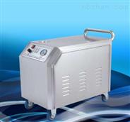 流动蒸汽洗车机