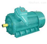 高压防爆系列三相异步电动机