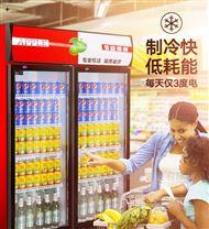 鹤壁新乡哪里有卖饮料柜 啤酒柜