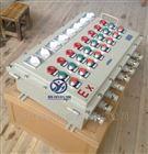 30A防爆配电箱 6K回路防爆动力箱