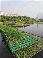 如克环保供应生态生物浮床,太阳能生态系统