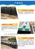 地埋式一体化屠宰污水处理设备 山东荣博源