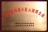 闵行区科技小巨人培育企业