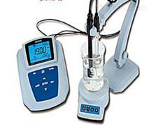 MP519氟離子濃度計