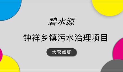 碧水源钟祥乡镇污水治理项目获湖北省领导高度评价