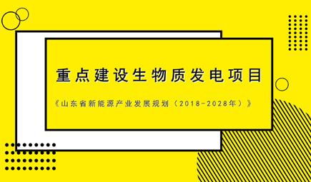 《山东省新能源产业发展规划(2018-2028年)》