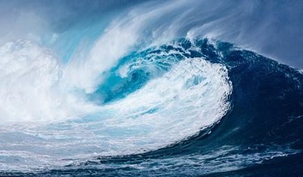 水生态构建的哲学思考