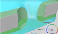 受生物啟發的液體柵極過濾膜能夠防止污垢積累