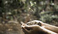 《国家土壤环境监测网农产品产地土壤环境监测工作方案》答记者问