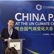 百万中国企业在行动,王石出席波兰气候大会