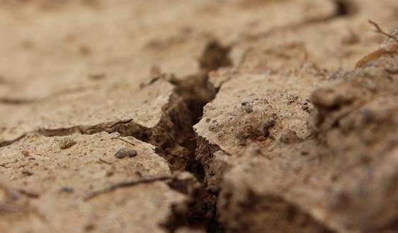 《土壤污染防治法》正式实施 市场或加速释放