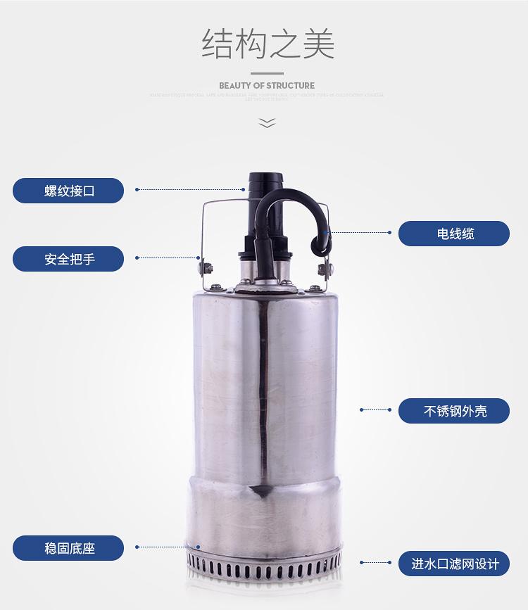 220V不锈钢潜水泵