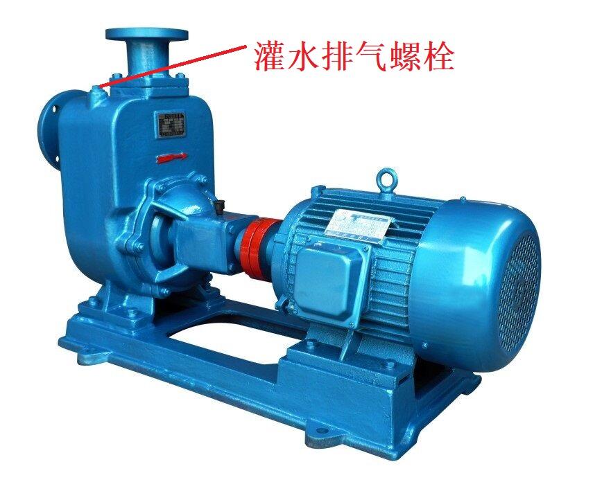 65ZW30-18自吸排污泵