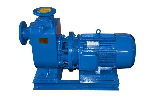 80ZW80-35自吸泵