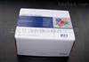 Mouse GM-SCF ELISA Kit