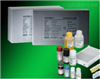 Mouse CD40 ELISA Kit