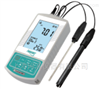 innoLab 10P便携式pH/ORP测量仪