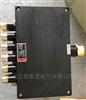 BJX8030-20A-380V防爆防腐接线箱分线箱端子箱塑料空箱